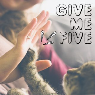 Give me five.