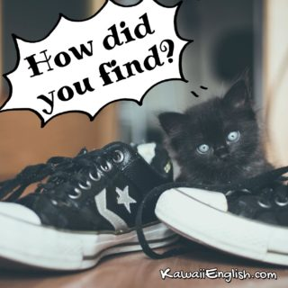 How did you find?
