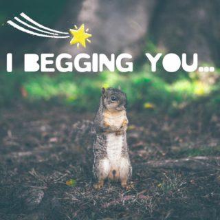I'm begging you.