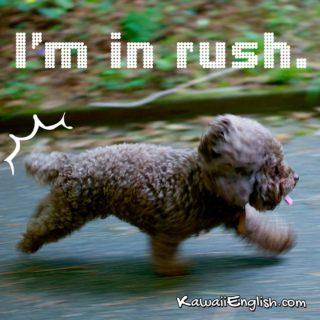 I'm in rush.
