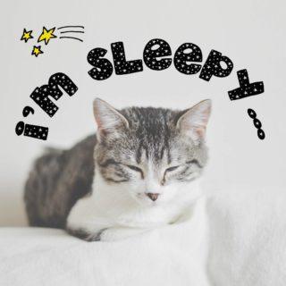 I'm sleepy.