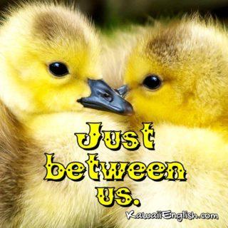 Just between us.