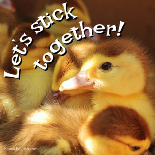 Let's stick together.