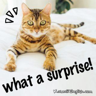 What a surprise.
